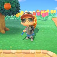 Animal Crossing: New Horizons: lista con todos los bichos de agosto