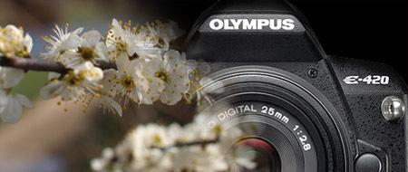 Fotos de Ejemplo de la Olympus E-420