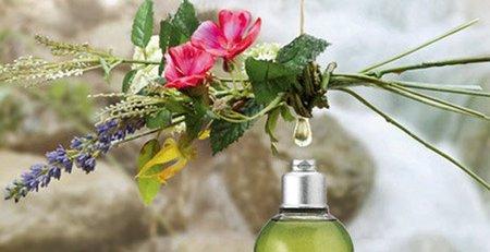 Aceite-esencial-vegetal