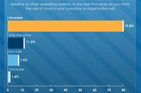 Las empresas que ya confían en Linux aumentarán su implantación en el futuro
