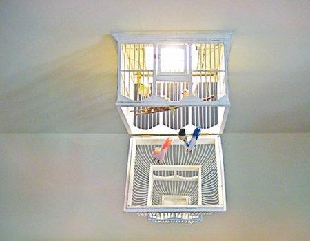 jaula lámpara otra