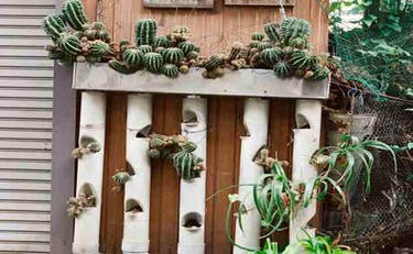 El jardín de la alegría
