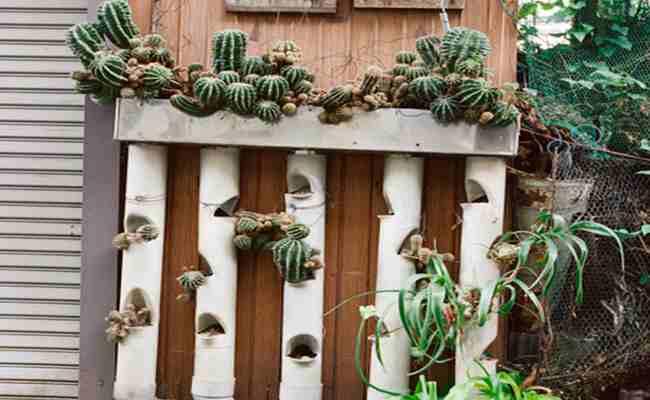 El jard n de la alegr a - Como hacer un jardin vertical paso a paso ...