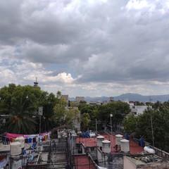 Foto 15 de 38 de la galería fotos-con-el-motorola-edge en Xataka México