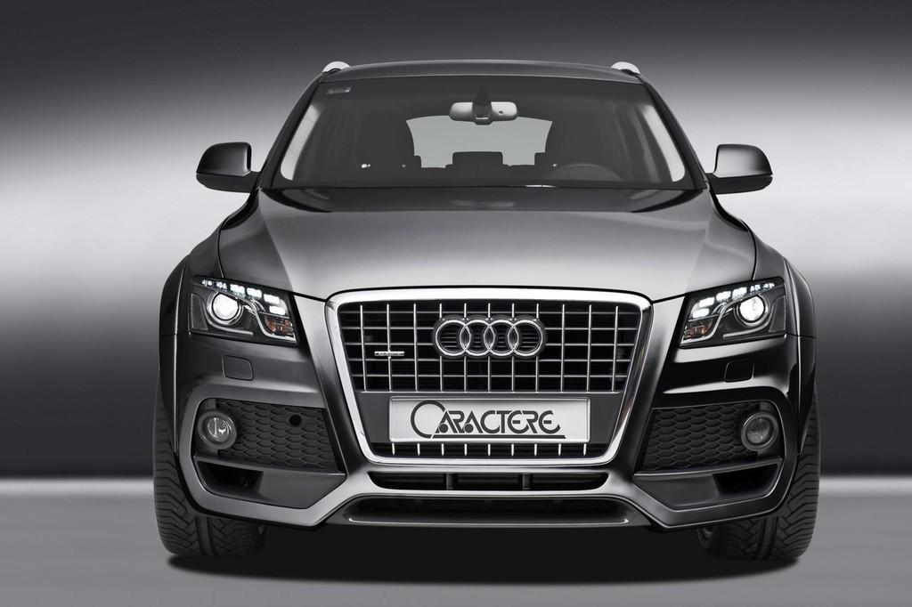 Foto de Audi Q5 Caractere (4/12)