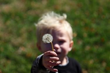 A los siete meses los bebés ya entienden otros puntos de vista
