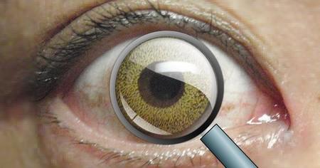 """Un grupo de científicos asegura haber creado una lentilla que nos permite """"hacer zoom"""" con sólo parpadear"""