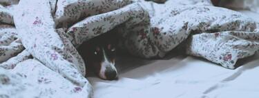 Así nos afecta dormir pocas horas a nuestro día a día