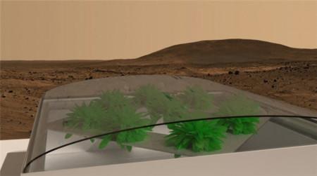 No es broma: Antes de colonizar Marte deberíamos lograr plantar lechugas allí