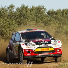 Foto 41 de 370 de la galería wrc-rally-de-catalunya-2014 en Motorpasión