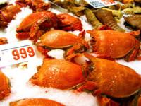 El marisco, un acierto en la dieta navideña