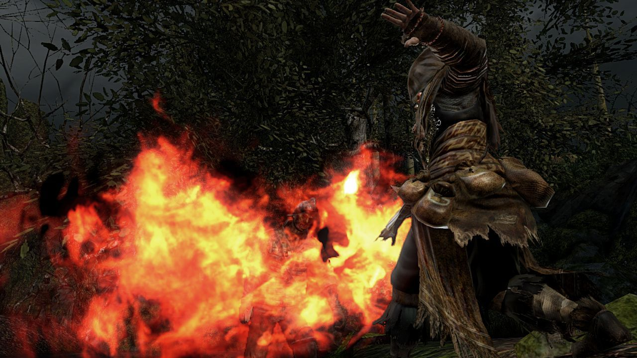 Foto de 170114 - Dark Souls II (19/24)
