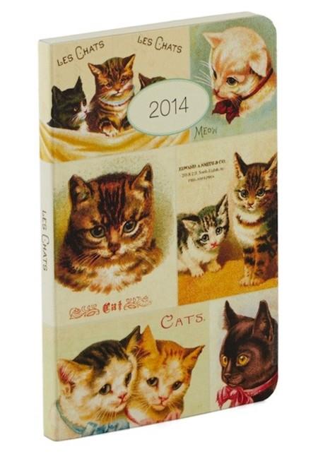 agenda gatos