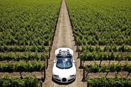 Bugatti Veyron Grand Sport Roadster, 71 imágenes espectaculares