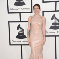 Skylar Grey Grammy 2014