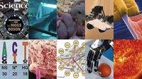 Los 10 mayores logros científicos de 2012 según la revista 'Science'