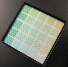 green_x220.jpg