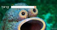 Rumor: Bing podría estar en venta