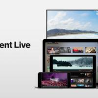 BitTorrent lanza su propia plataforma de streaming en directo