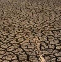 El Grupo Intergubenamental sobre el Cambio Climático (IPCC)