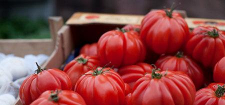 ¿Por qué los tomates de mi pueblo (riquísimos) no llegan al súper de mi ciudad?