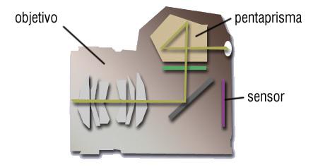 esquema réflex
