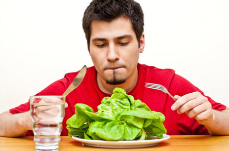 Dieta nasa original logo