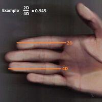 Un nuevo estudio sugiere una explicación alternativa al hecho de que la longitud de los dedos de hombres y mujeres sea distinta