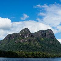 Más de 300 años de la llegada de los europeos al Nuevo Mundo, la Amazonia ya había sido despoblada y reforestada
