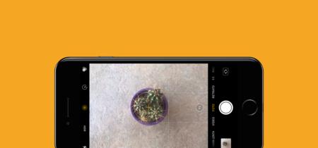 Cómo medir la inclinación de una fotografía con Cámara en iOS 11 para alinearla correctamente