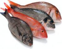 Riesgos del pescado