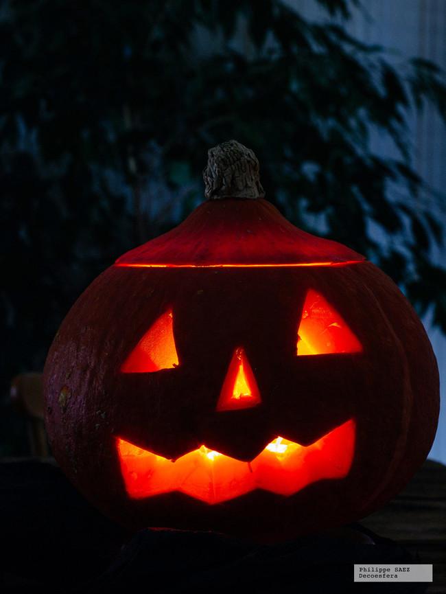 Calabaza Halloween Diy 4
