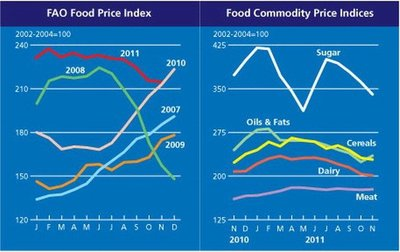 Alimentos caen 10% desde febrero, según la FAO