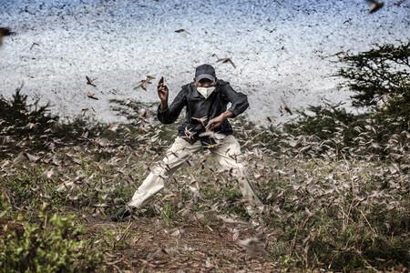Un español entre los aspirantes a ganar el prestigioso concurso de fotoperiodismo World Press Photo 2021