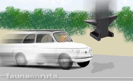 fauna en ruta: cosas que te encuentras por la carretera