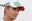 Nico Hulkenberg: en 2013 en Sauber y ¿en 2014?