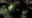 'La Cosa del Pantano de Alan Moore', piedra angular