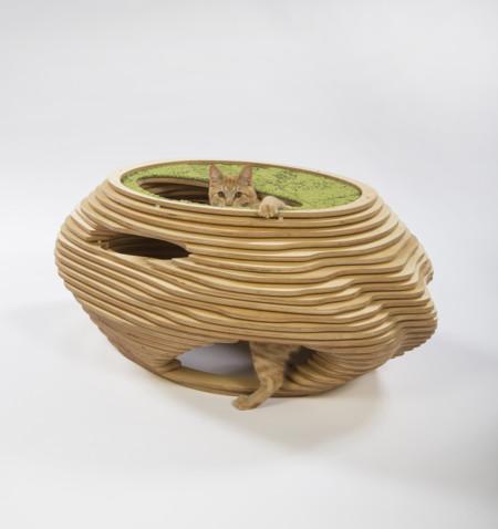 ¿Qué sucede cuando famosos estudios de arquitectura diseñan casas para gatos?