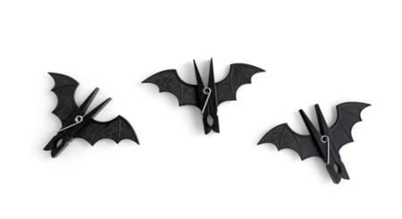 bat-product-3-on-white.jpg