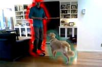 ¿Es un perro o un ladrón? La tecnología de los coches autónomos puede proteger tu hogar