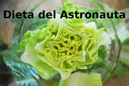 Dieta del astronauta. Análisis de dietas milagro (XXXVII)