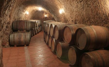 Las bodegas más singulares de Ribera del Duero
