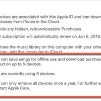 "Aparecen rastros de un ""iTunes Subscription"": ¿error o pista?"