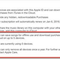 """Aparecen rastros de un """"iTunes Subscription"""": ¿error o pista?"""
