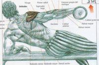 Hombros de acero con levantamientos laterales en banco inclinado