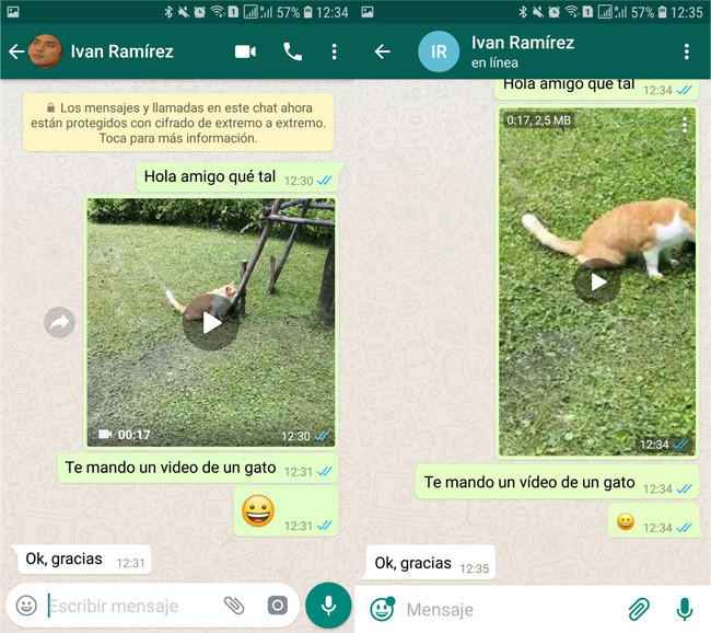 WhatsApp and Telegram dressed in WhatsApp, similar but different