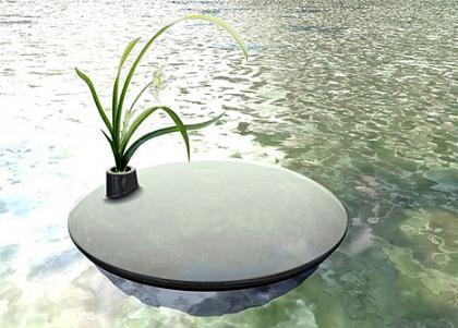 Cuida tu estanque decorando