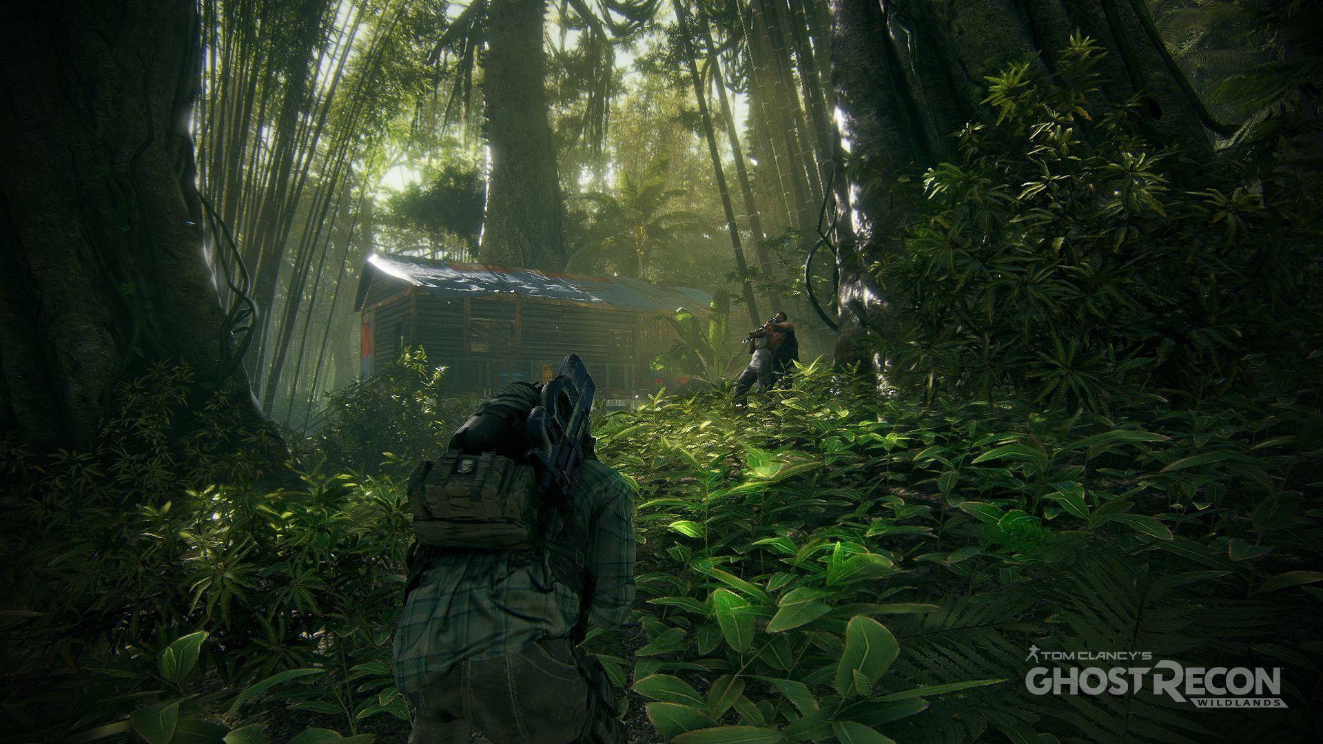 Foto de Ghost Recon: Wildlands (8/11)