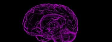 Un nuevo algoritmo del MIT puede entrenar redes neuronales 200 veces más rápido que las técnicas vigentes