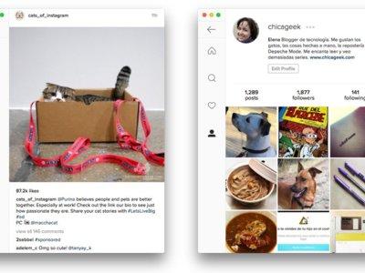 Ramme, o cómo tener la aplicación de Instagram en tu escritorio